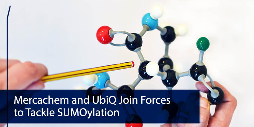 Mercachem Ubiq join forces tackle sumoylation 72dpi